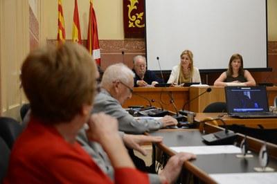 Un moment del plenari (foto: Localpres)