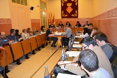 Durant la sessió plenària corresponent al mes de gener de 2015 s'han debatut un total de vuit mocions.
