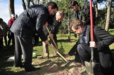 El regidor ha participat a la plantació d'un dels arbres (foto: Localpres).