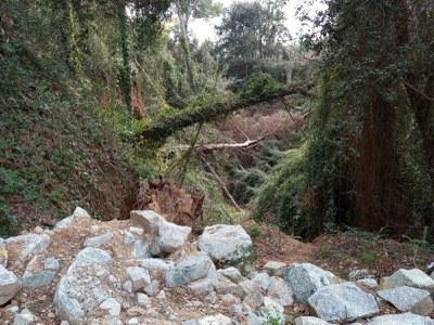 Els treballs han consistit, entre d'altres, en la retirada de troncs (foto: Ajuntament de Rubí ).