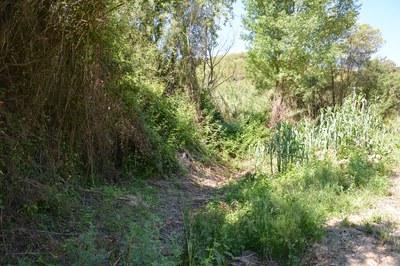 Les obres permetran vehicular les aigües residuals de les urbanitzacions de Ximelis, Can Serrafossà i Els Avets a la depuradora de Rubí.
