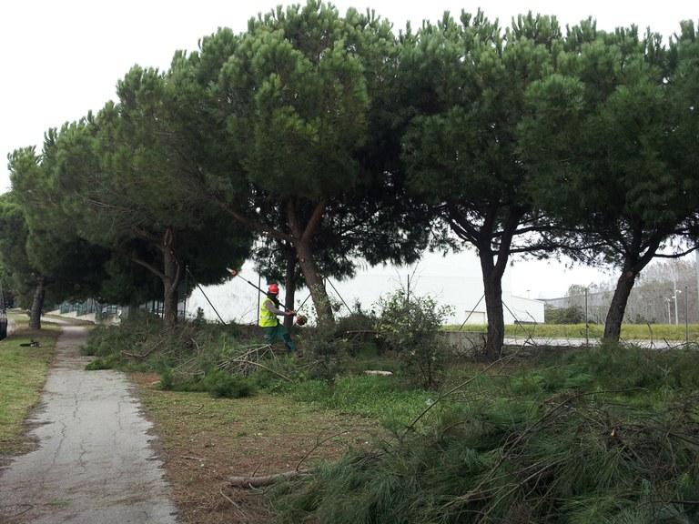 Al solar de l'avinguda de la Generalitat s'hi ubicarà un circuït d'elements per a l'escalfament esportiu