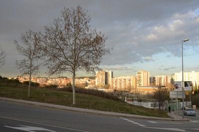 L'Ajuntament adequarà aquest solar municipal per a destinar-lo al cultiu (foto: Localpres).