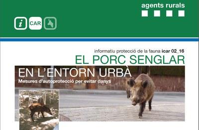 El controls dels senglars és competència dels Agents Rurals.