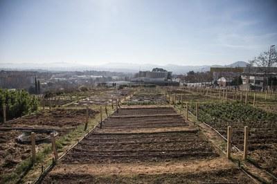 El curs es realitzarà als horts municipals de Cova Solera (foto: Ajuntament de Rubí – Lali Puig).