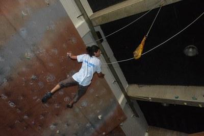 Els nous llançaments al pernil (foto: Localpres)