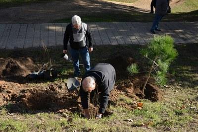 Durant el Dia de l'arbre autòcton, els participants poden plantar arbres i arbustives (foto: Ajuntament – Localpres).
