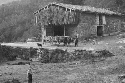 Detall d'una fotografia de Can Purxingues, Olot (Arxiu Fotogràfic Centre Excursionista de Catalunya).