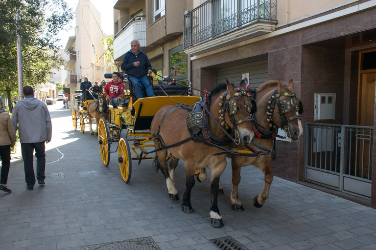 Aquest any, 'Puja al carro de Sant Antoni' ha comptat amb dos carruatges (foto: Localpres)