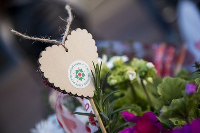 El viver ja prepara la campanya especial del Dia dels Enamorats (foto: Ajuntament de Rubí - Localpres).