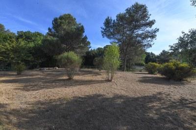 El torrentó de Can Solà és un emplaçament privilegiat (foto: Ajuntament de Rubí – Localpres).