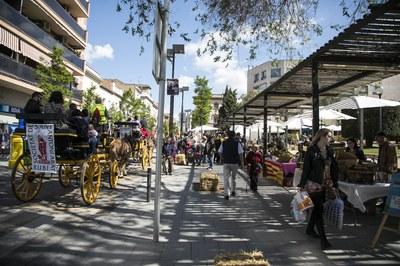 La Fira del Dia de la Terra s'ha celebrat a la pl. Pearson i les seves immediacions (foto: Ajuntament de Rubí - Lali Puig)