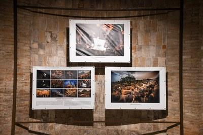 Entre les obres que es poden veure al Celler destaquen les que han obtingut el primer premi (foto: Ajuntament de Rubí – Localpres).