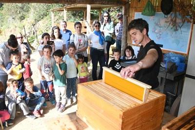 També han après moltes curiositats sobre les abelles i l'apicultura (foto: Localpres)