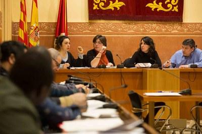 El Plenari ha estat presidit per la regidora de Governança i Ciutadania, Neus Muñoz (foto: Localpres)