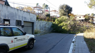 A Rubí, un arbre va caure al c/ Cabrera arran de la ventada i impedia la circulació per aquesta via.