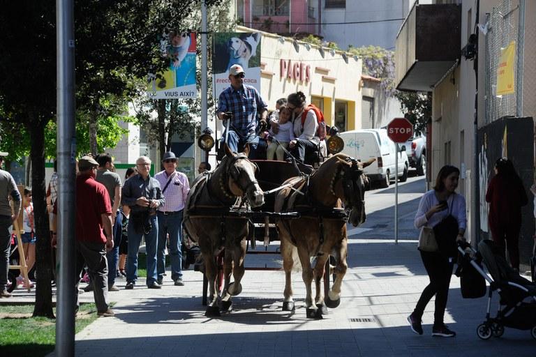 """La Societat Sant Antoni Abat ha organitzat novament l'activitat """"Puja al carro de Sant Antoni"""" (foto: Localpres)"""