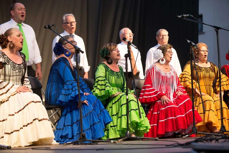 Actuació de les entitats andaluses (foto: Localpres)