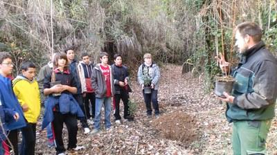 Jornada de plantació 2013/2014 I.