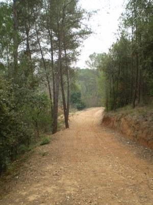 Camí de Can Roig a Can Fonollet.