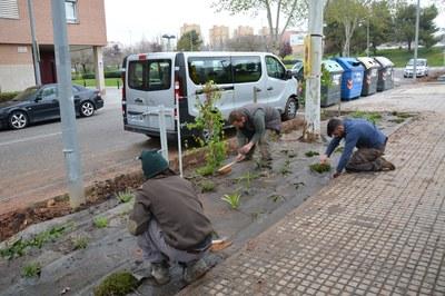 Estudiantes franceses han realizado tareas de jardinería en la calle Doctor Ferran.
