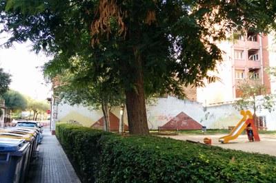 Una de las actuaciones previstas es la eliminación de este espacio vegetal, que actualmente ejerce de barrera de acceso a la plaza.