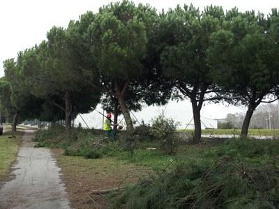 En el solar de la avenida Generalitat se ubicará un circuito de elementos para el calentamiento deportivo