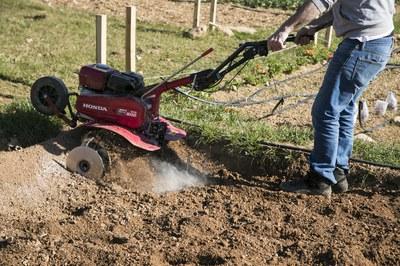 La formación se centrará en el cultivo ecológico (foto: Ayuntamiento – Lali Puig).