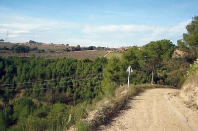 La ausencia de lluvias y las altas temperaturas conllevan un elevado riesgo de incendio forestal (foto: Lídia Larrosa).