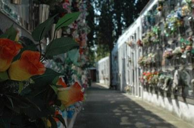 El cementerio abrirá ininterrumpidamente de 9 h a 18 h entre los días 22 de octubre y 2 de noviembre.