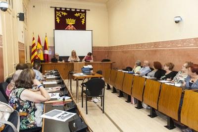 Un momento de la sesión plenaria celebrada este miércoles (foto: Cesar Font).