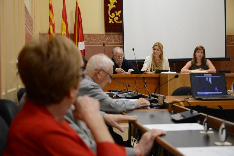 Un momento del plenario (foto: Localpres)
