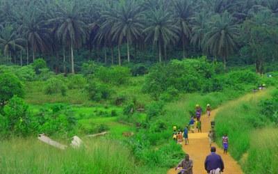 Uno de los países afectados por el brote de ébola es Sierra Leona (foto: Wikipedia).