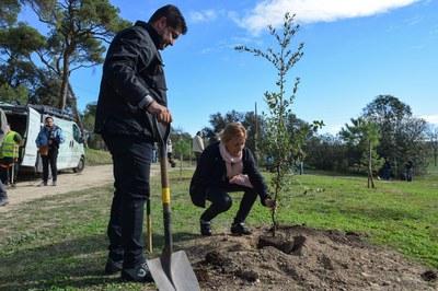 La alcaldesa ha contribuido a repoblar el bosque de Ca n'Oriol en el marco de la plantada del Día del árbol autóctono (foto: Localpres).