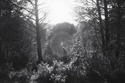 Detalle de una de las fotografías de Dismal Mist que se podrán ver en la exposición.