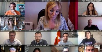 Nuevamente, y debido a la Covid-19, el Plenario se ha vuelto a reunir de forma telemática (foto: Ayuntamiento de Rubí).