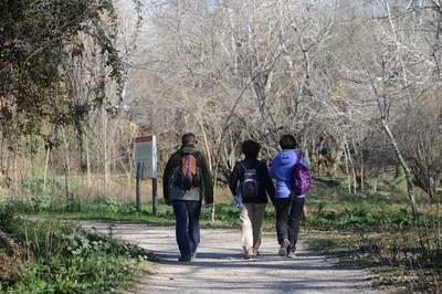 A lo largo del año, el Ayuntamiento organiza dos ciclos de caminatas coincidiendo con la primavera y el otoño (foto: Localpres).