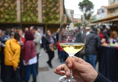 Miles de personas pasaron el año pasado por la Feria del Vino (foto: Localpres).