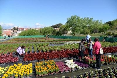 La ciudadanía podrá disfrutar de los colores que llenan la Font del Ferro durante la primavera (foto: Localpres).