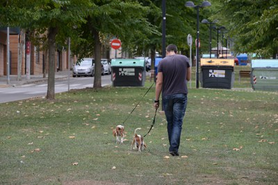 La ordenanza de tenencia de animales regula las buenas prácticas con las mascotas (Localpres).