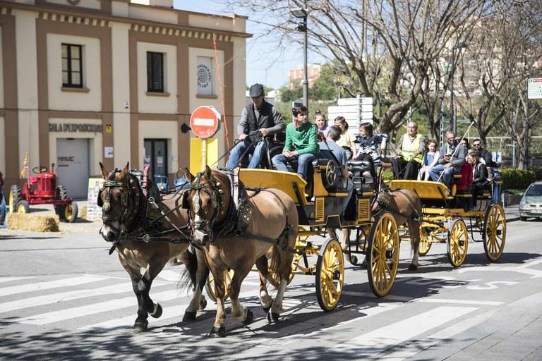 """Sant Antoni Abat ha vuelto a ofrecer la actividad """"Puja al carro de Sant Antoni"""" (foto: Ayuntamiento de Rubí - Lali Puig)"""