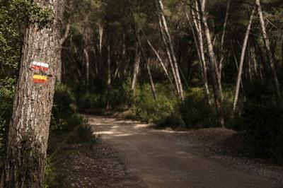 La red la integran un total de 13 itinerarios circulares con diferentes longitudes y grados de dificultad (foto: Ayuntamiento de Rubí - Lali Puig).