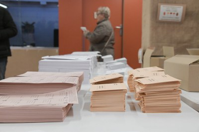 Las elecciones están pendientes del pronunciamiento del TSJC (Foto: Ayuntamiento/Localpres).