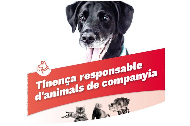 Animals_campanya_tinença
