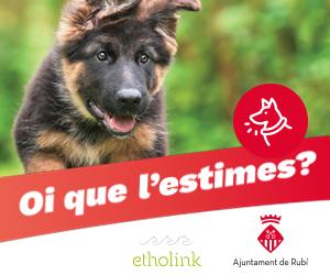 Cens gossos_cartell 300