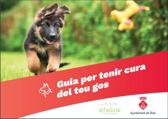 guia gos.PNG