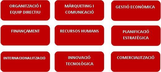 projecte empresa.jpg