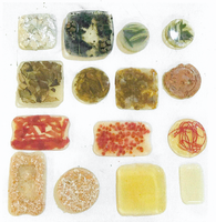 EcoTaller de creación de bioplásticos