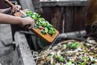 EcoTaller de compostaje casero