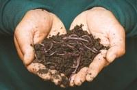 EcoTaller de vermicompostaje